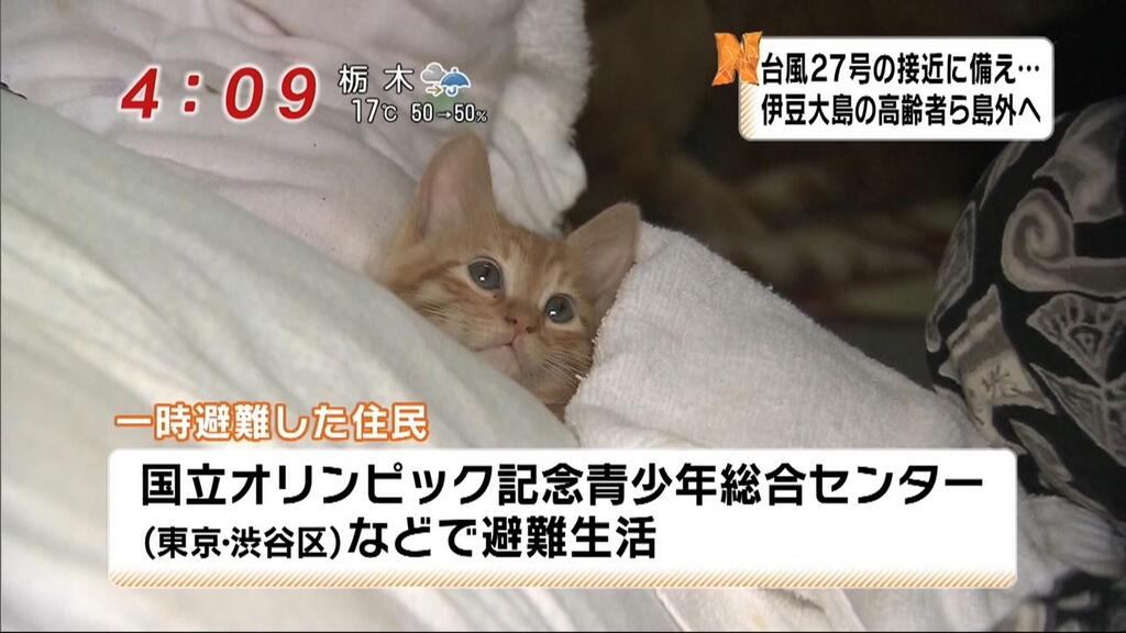 【画像あり】 台風で避難してる住民が可愛すぎると話題に (´・ω・`)