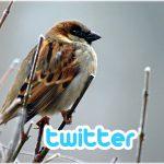 Twitterのツイートを自分のサイトやブログに埋め込む(埋め込みツイートの利用)方法